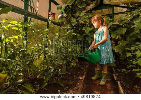 Young Girl Water With The Watering Can In The Greenhouse