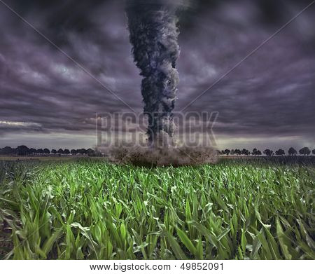 large tornado over the meadow (photo and 3D elements compilation)
