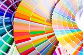 Sample of colorful paint. Choosing the right color. poster