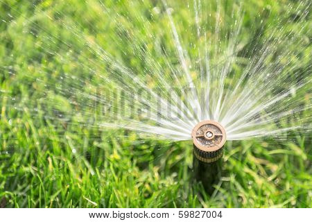 automatic sprinkler