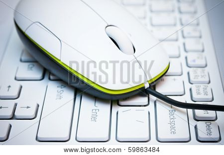 Computer Mouse On The Laptop