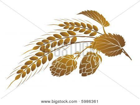 Hops And Wheat