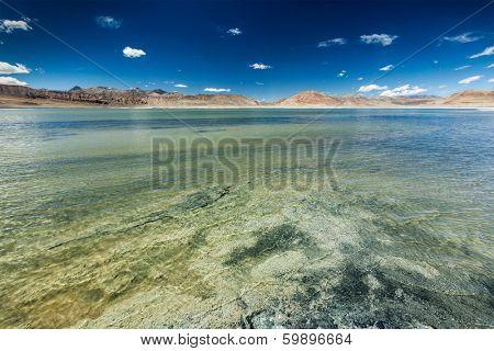 Tso Kar - fluctuating salt lake in Himalayas. Rapshu,  Ladakh, Jammu and Kashmir, India poster
