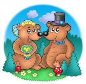 Wedding image with bears on meadow - color illustration. poster
