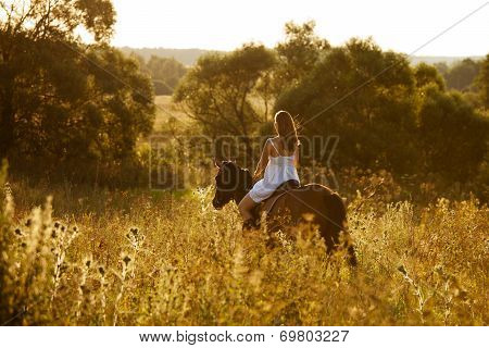 Young Woman On A Brown Horse