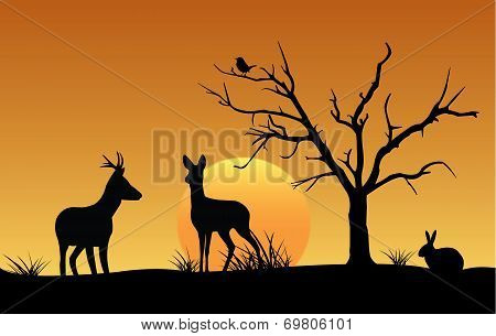 Deer, hare and bird silhouette at sunset
