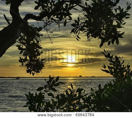 Sunrise in Sanibel Island