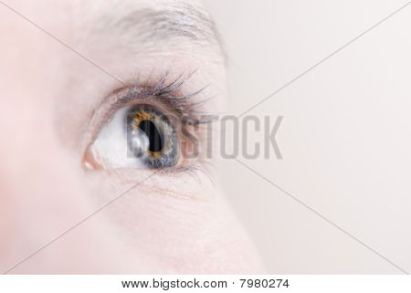Eye Macro With Copy Space