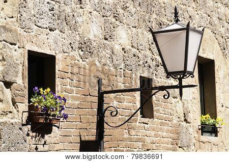 Siena Flower And Light