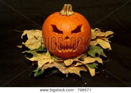 halloween pumpkin on leafs