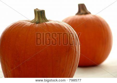 pumpkins on white
