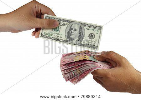 Dollar and Rupiah Money Exchange