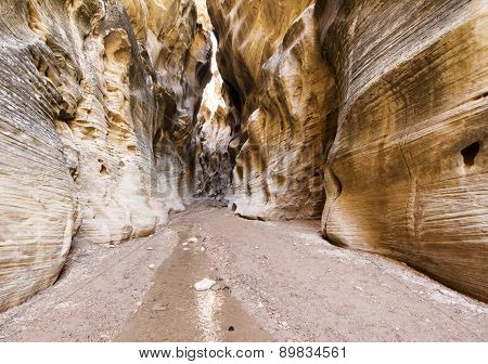Willis Creek Canyon
