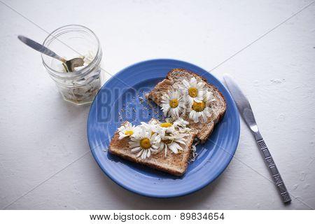 Daisies On Toast