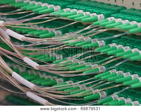 Fiber Optic Connectors in the back of a Distribution Panel