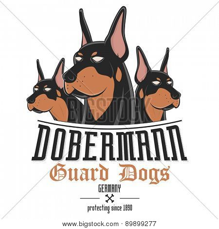 dobermann dog vector illustration