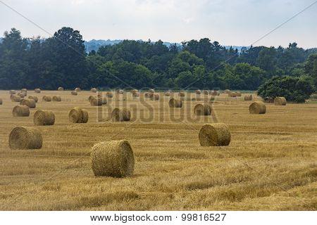 Hay bails sit in a farmers' field
