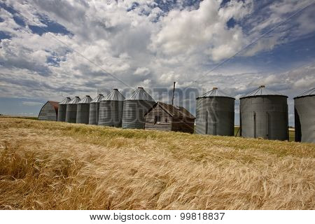 Row Of Granaries