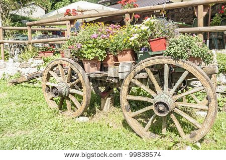 Old Wooden Cart With Pots Of Flowers