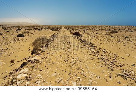 Desert Of  Fuerteventura In Area Costa Calma And Istmo De La Pared
