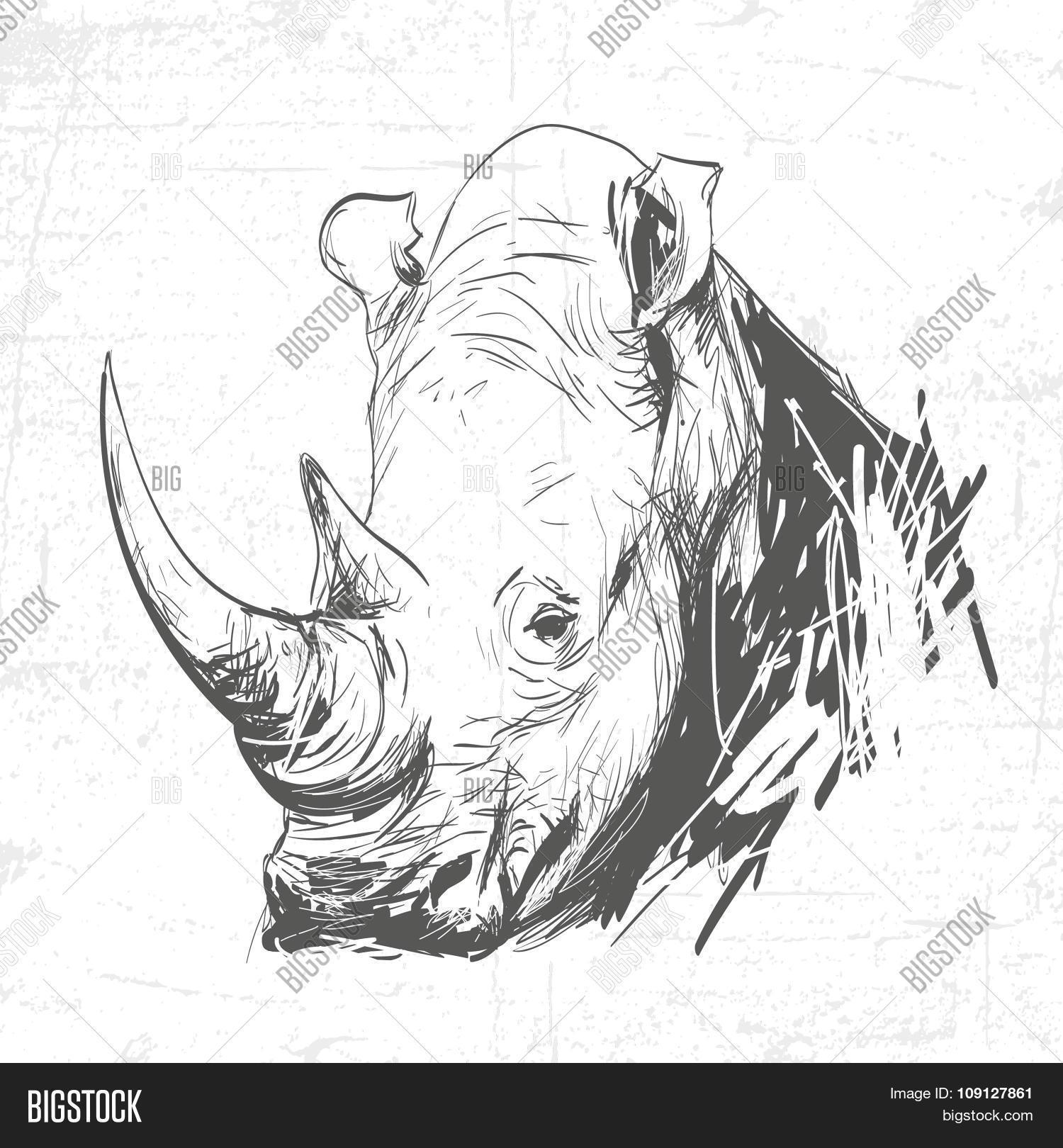 Head Rhino Art Vector & Photo (Free Trial) | Bigstock