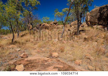 Hiking Trail In The Undara Volcanic National Park, Australia