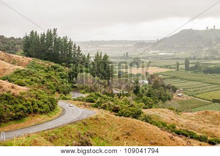 Takaka Valley, South Island, New Zealand