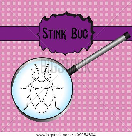 Insect In Magnifier.shield Bug. Palomena Prasina. Sketch Of Shield Bug.