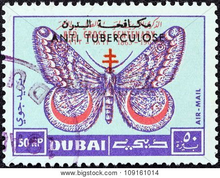 DUBAI EMIRATE - CIRCA 1963: A stamp printed in United Arab Emirates shows March moth