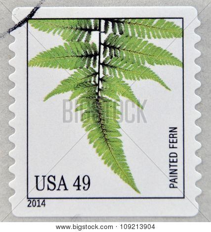 A stamp printed in USA dedicated to Ferns shows painted fern circa 2014