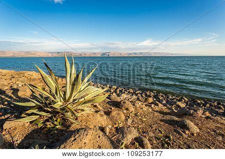 Panorama Of The Galilee Sea, Israel