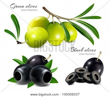 Black and green olives, pitted olives and olives slices. Vector illustration.