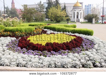 Different decorative flowers make flowerbed composition in the city