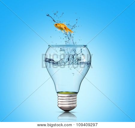 Goldfish In Lightbulb. Concept Freedom