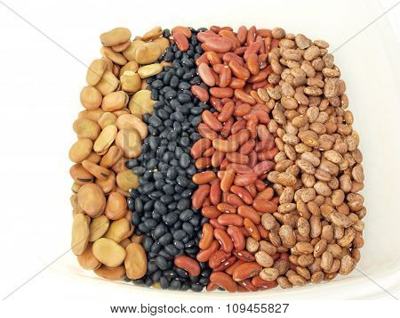 Dried Beans Variety