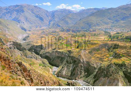 Colca Canyon, Peru,south America.