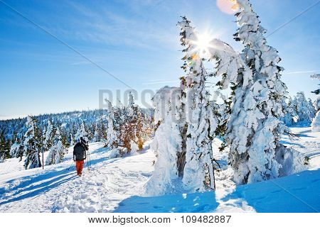 Krkonose (giant) Mountains, Czech Republic