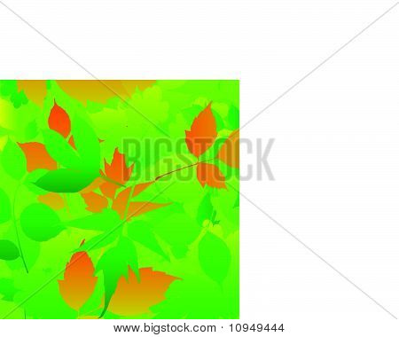 Abstract nature background with leaves vector format.