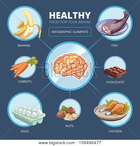 Brain food vector infographics
