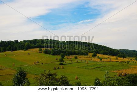 Hay field in Apuseni