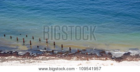 beach with blue ocean spiles and seaweed