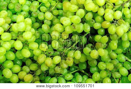 Green Sultana Grapes High Contrast Background