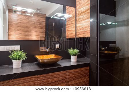 Elegant Bathroom In Luxurious Style