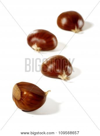 Chestnuts  isolated on a white.