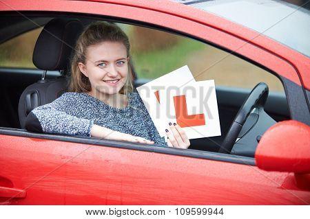Teenage Girl Passing Driving Exam