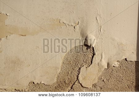 Effect Of Ascensional Humidity On Plaster
