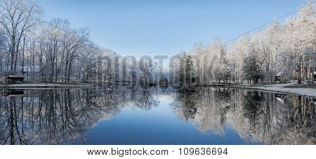 Snowy Winter Tree Lake Reflections