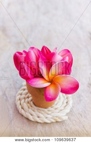 Romantic Vintage  Love Background Decorated With Lovely Flower Plumeria In Corsage Style