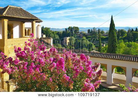 Generalife Gardens.