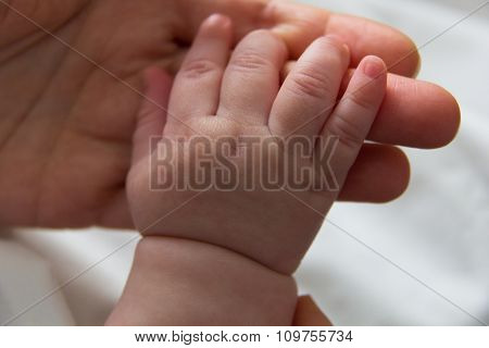 Hand Newborn